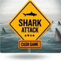 Challenge Betclic shark attack