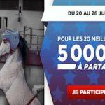 Betclic met en jeu 5.000€ à l'occasion de son Challenge Turf du mois de juin